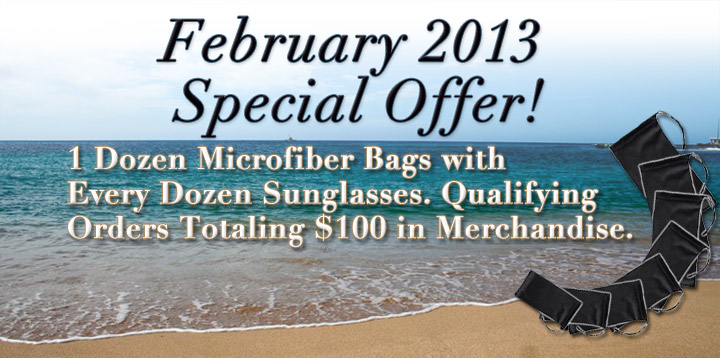 February 2013 Special Offer!